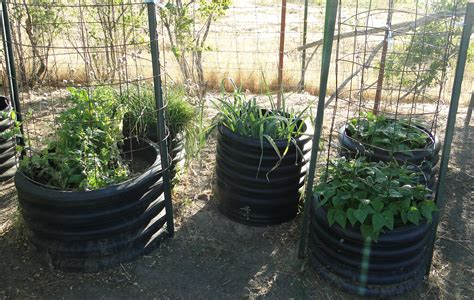 Culvert Pipe Planters by Plant In Pots Buckets And Planter Boxes For Limited Space