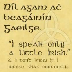 quotes in gaelic quotesgram