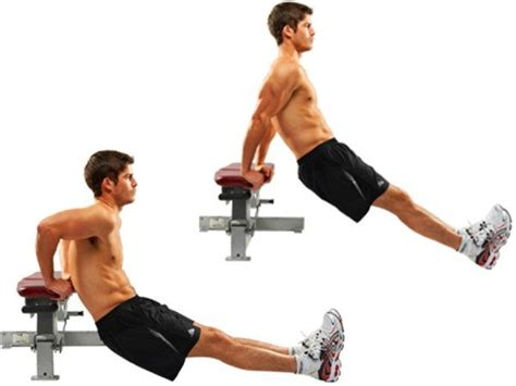 dips on bench top 10 best exercises to do at home without any equipment