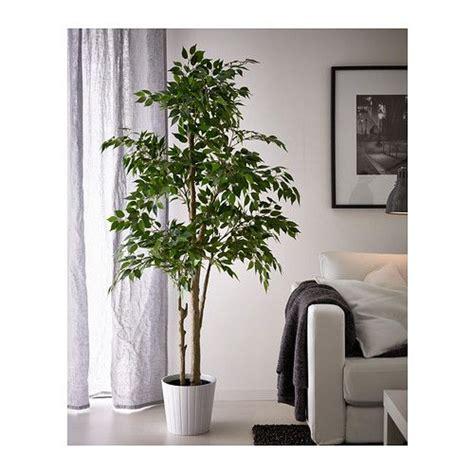 artificial indoor garden images  pinterest