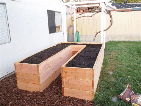 tall raised garden beds raised garden bed three dog kitchen