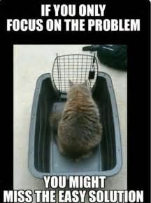 focus on the if you only focus on the problem you might miss the easy
