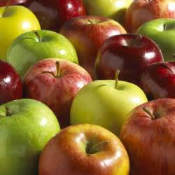 apple to apple apples a guide to selection and use chow line