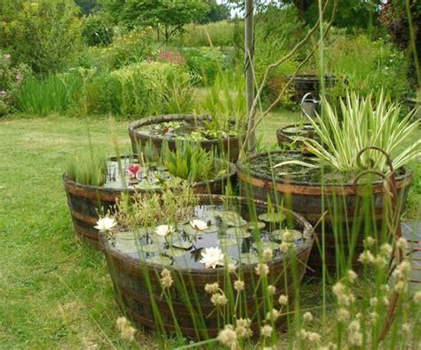 bac poisson jardin transformation d une demi barrique en bassin santonine plantes aquatiques jardin