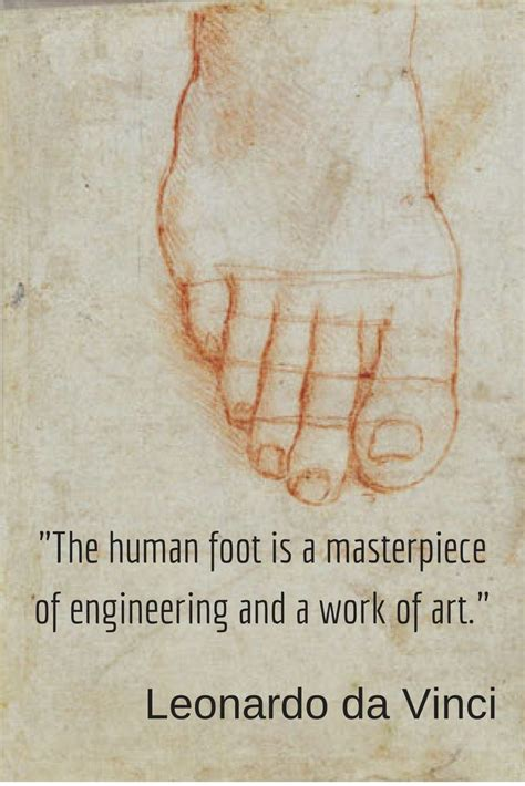 leonardo da vinci bio poem quot the human foot is a masterpiece of engineering and a work