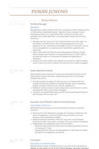 7 portfolio manager cv exle visualcv resume sles database portfolio manager resume sles visualcv resume sles database
