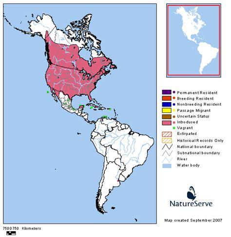 tennessee watchable wildlife european starling habitat