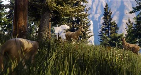 gta  wildlife  ps pc xb trailer product reviews net