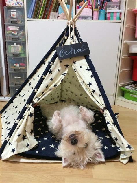 pup tents are a home away from home for your dog