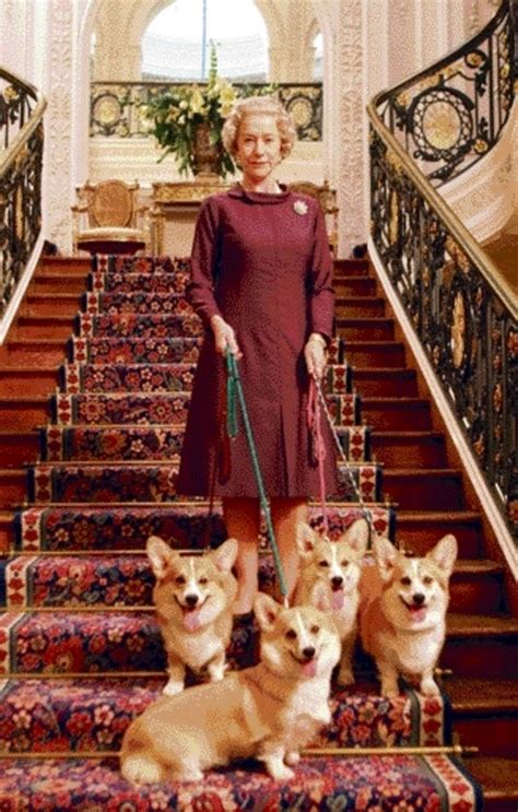 the queens corgis the queen and her corgis cute animals pinterest