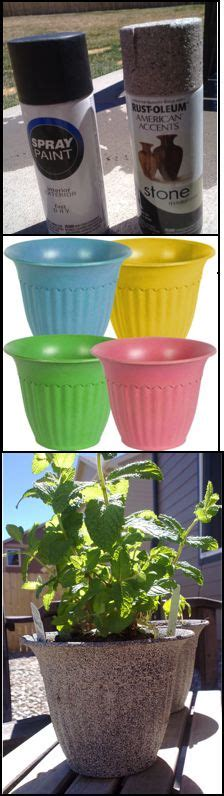 Cheap Flower Pots And Planters by 25 Best Ideas About Cheap Planters On Garden