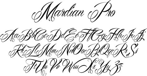 tattoo script font mardian pesquisa typography