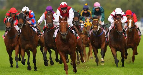 How To Win Money On Horse Racing - horse racing tips horse racing guide