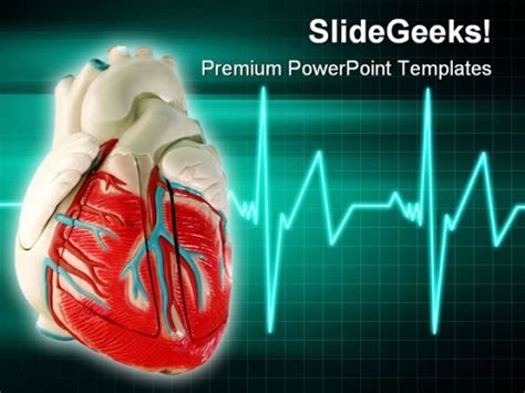 free cardiac powerpoint templates free cardiac powerpoint templates the highest quality