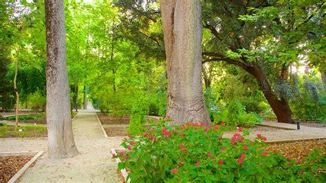 giardino botanico valencia jard 237 n bot 225 nico de valencia informaci 243 n de jard 237 n