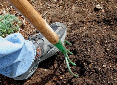 The Flower Bin Spring Soil Amendments For Vegetable Gardens Soil Amendments For Vegetable Garden