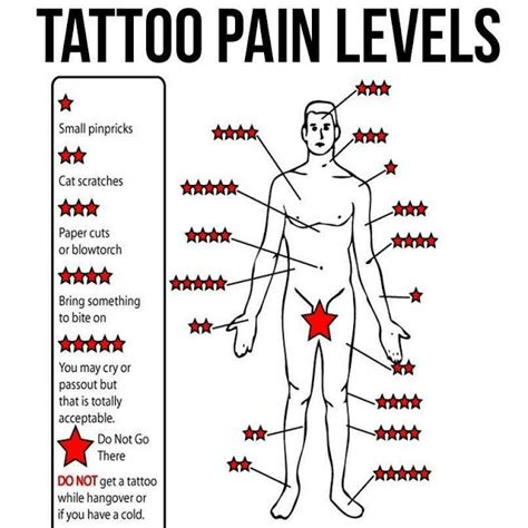 tattoo pain diagram does it hurt chart models picture