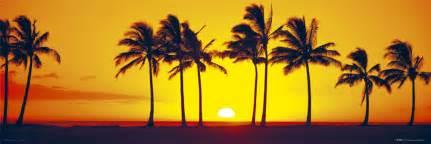 Hawaiian Doormat Hawaiian Sunset Poster Sold At Abposters Com