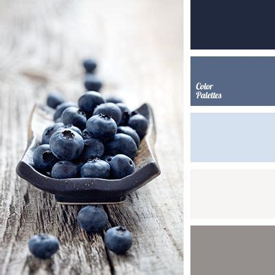colors that go with dark grey best 25 color palette gray ideas on pinterest