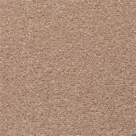 Rug On Beige Carpet by Light Beige Carpet Texture