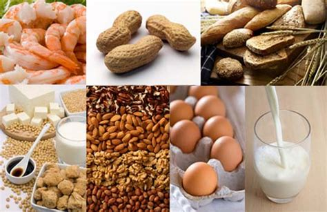 can food allergies cause mood swings food intolerance and food allergy testing auckland