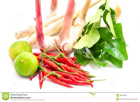 ingredients for cooking tom yum dish chili hot spicy
