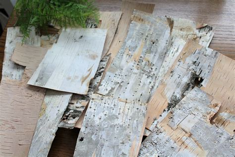 Birch Tree Paper For Crafts - 15 birch bark sheets birch bark paper birch craft
