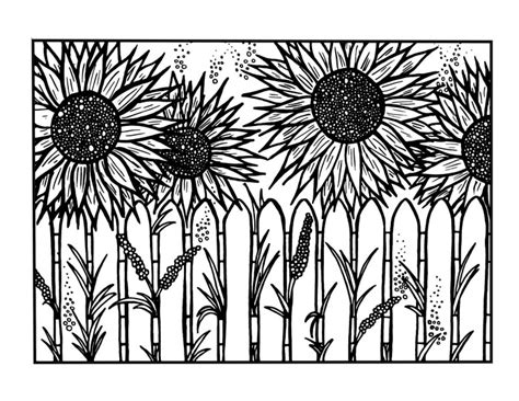 abstract sunflower coloring page coloring pages for adults flowers resume format download pdf