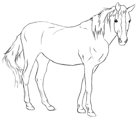 Really Cool Mugs by How To Draw A Horse Draw Central