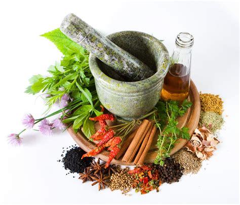 cara membuat bakso herbal cara membuat ramuan obat pengobatan herbal alami tradisional