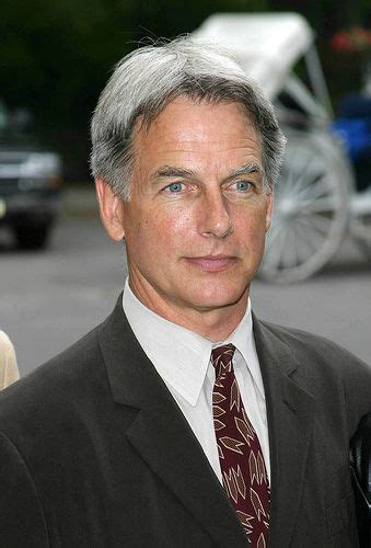 ncis what is up with gibbs hair 517 best images about mark harmon on pinterest special