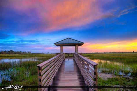 Florida Landscape Pine Glades Natural Area