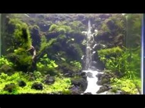 aquarium design waterfall how to make a waterfall in a planted aquarium this is