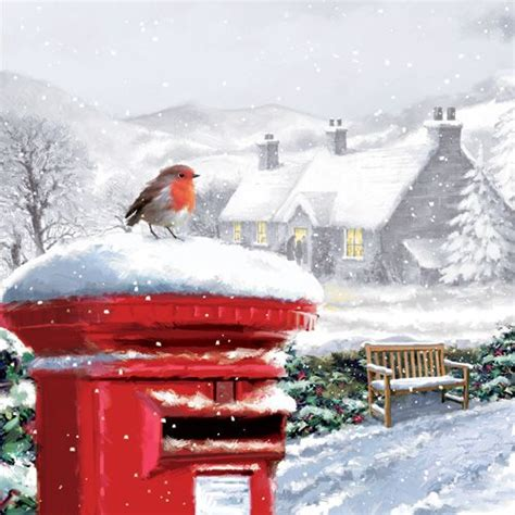 donation as a christmas gift birds robin on postbox charity card merry robins