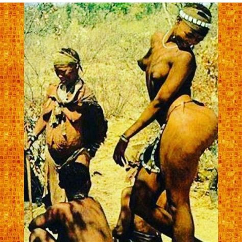 libro hottentot venus vintage 59 best black women of history images on history old pictures and black women