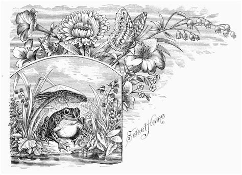 coloring pages for adults unique fantasy coloring pages for adults unique fantasy google search