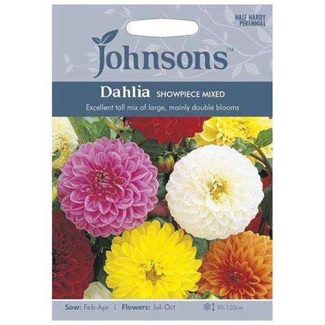 Jual Beli Bibit Bunga Dahlia jual benih dahlia showpiece mixed 40 biji johnsons seeds
