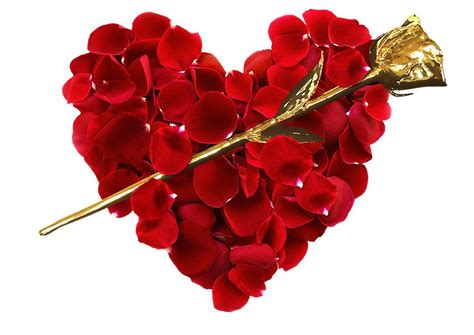 Valentines Day Roses by S Day Gifts Infinity