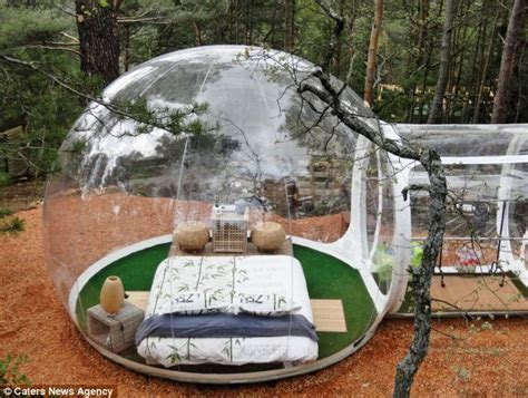 Outdoor Dog Bed Amazon French Bubble Hotel Where The Rooms Are Plastic Daily