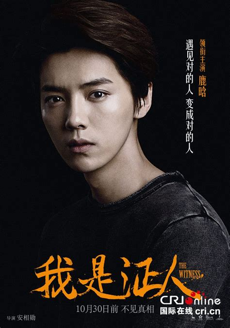 film china the witness 431 best images about exo luhan former member on pinterest