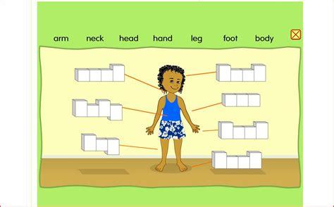 imagenes en ingles de las partes del cuerpo primaria el rinc 243 n de clara el cuerpo humano en ingl 201 s
