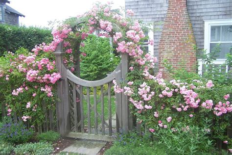 Garden Gate Flowers by 12 Fabulous Floral Garden Gates In Bold Color The In