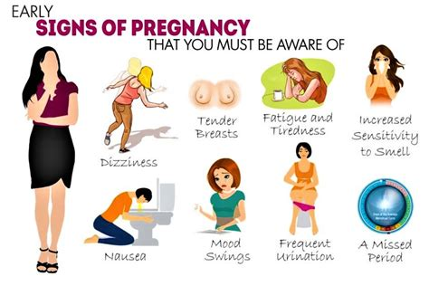 mood swings during early stages of pregnancy what are the early signs and symptoms of pregnancy pets