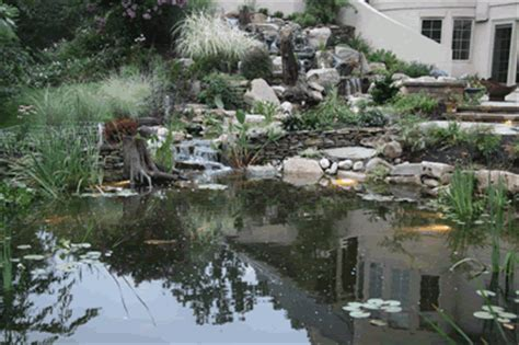 certified aquascape contractor the garden s edge certified aquascape contractors