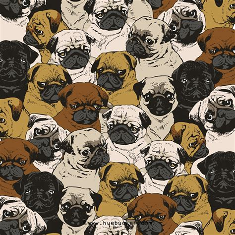 many pugs pug on behance