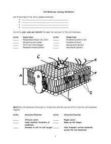Cell Membrane Structure And Function Worksheet by Cell Membrane Worksheet Search Interactive