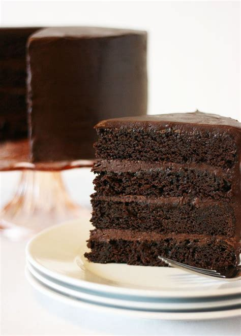The 25  best Chocolate mud cake ideas on Pinterest   White