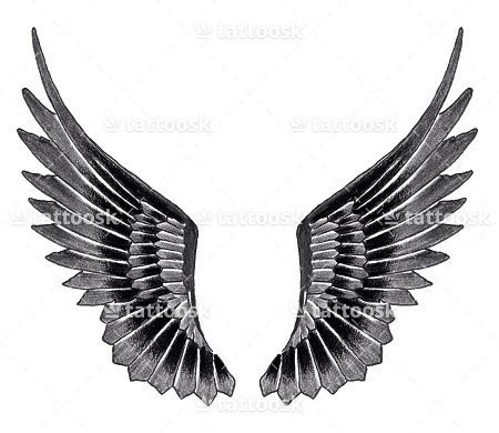eagle wings tattoo eagle wings designs www pixshark images