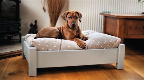 diy elevated dog bed quot wooden handmade raised dog beds quot temp pinterest dog
