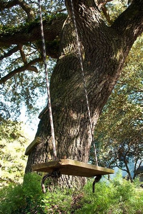 tree and swing tree swing awesome design house stuff pinterest